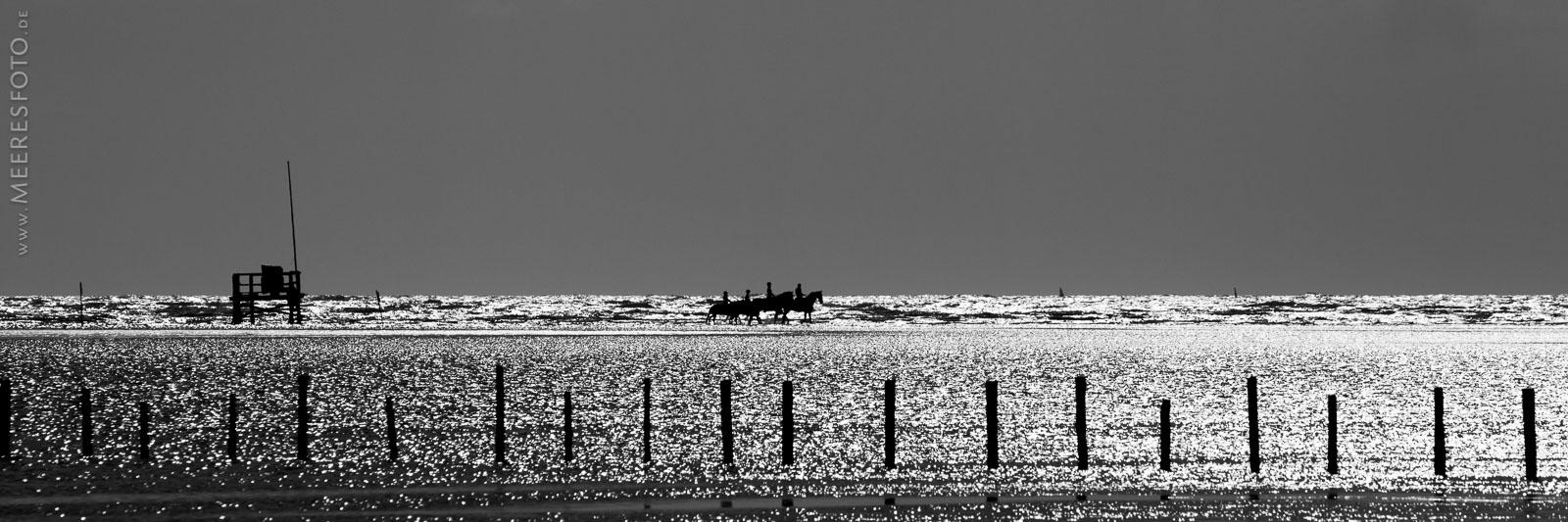 Familienausritt im Nordseelicht